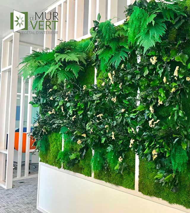 Le mur vert, quand le végétal s'accroche aux murs photo 1