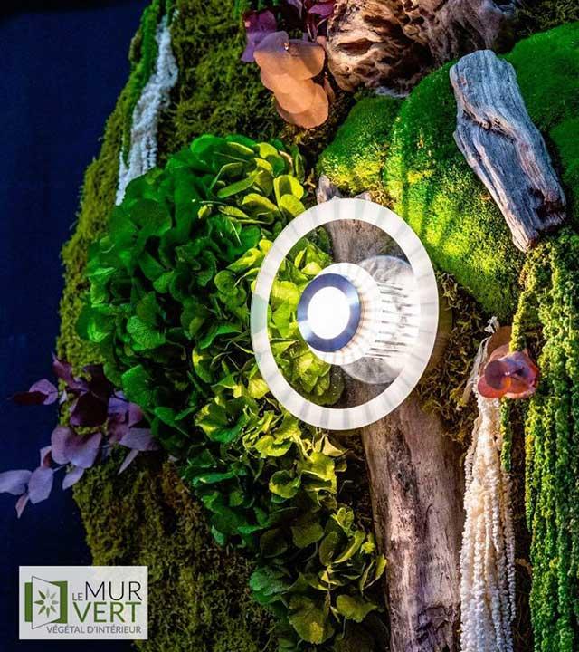 Le mur vert, quand le végétal s'accroche aux murs photo 2