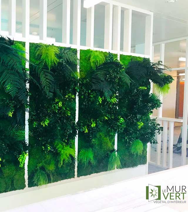 Le mur vert, quand le végétal s'accroche aux murs photo 4