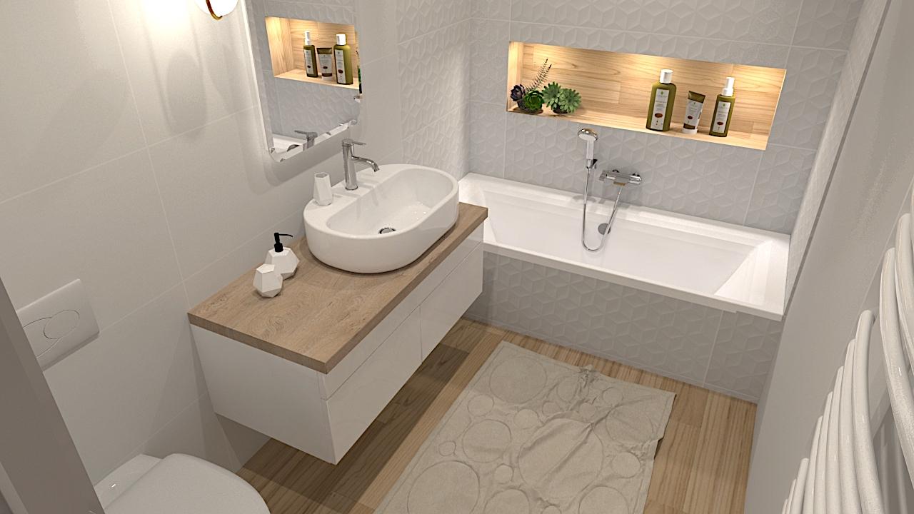 image du t4 au t5 salle de bain baignoire LR Architectes
