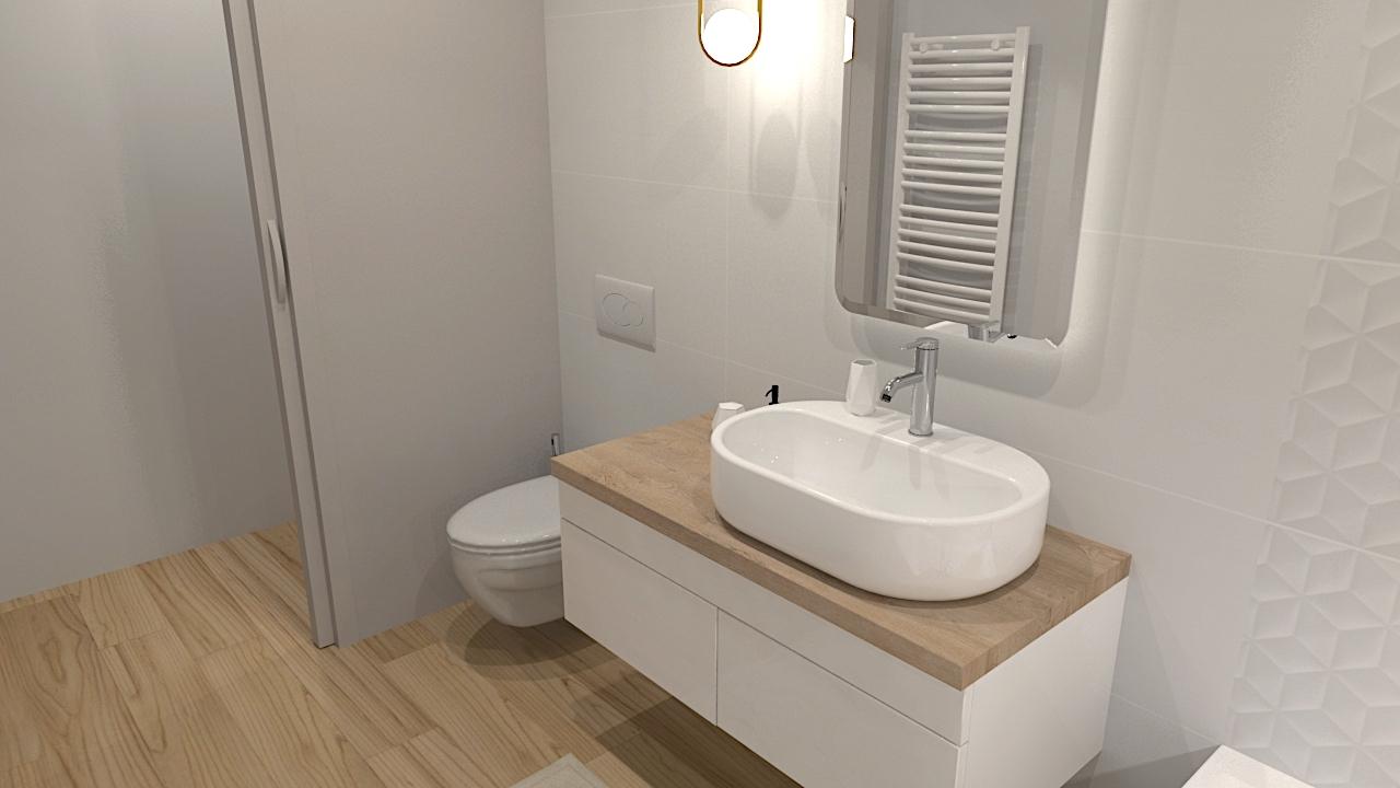image du t4 au t5 salle de bain LR Architectes